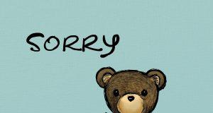 Professional apologer