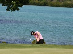 a diver for golf balls
