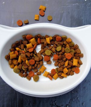 a tester of pet food